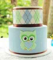 finished-owl-cake